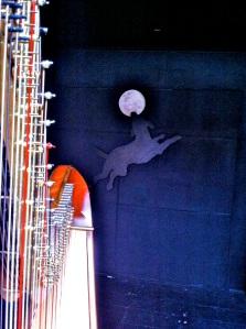 harp at The Black Dog